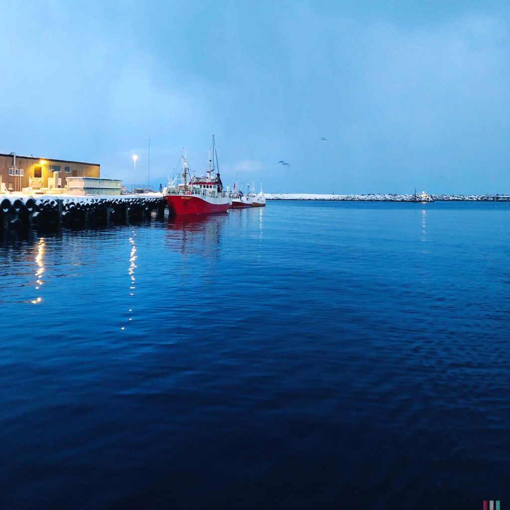 Winter Whale Watching in Norway: The harbor of Andenes.
