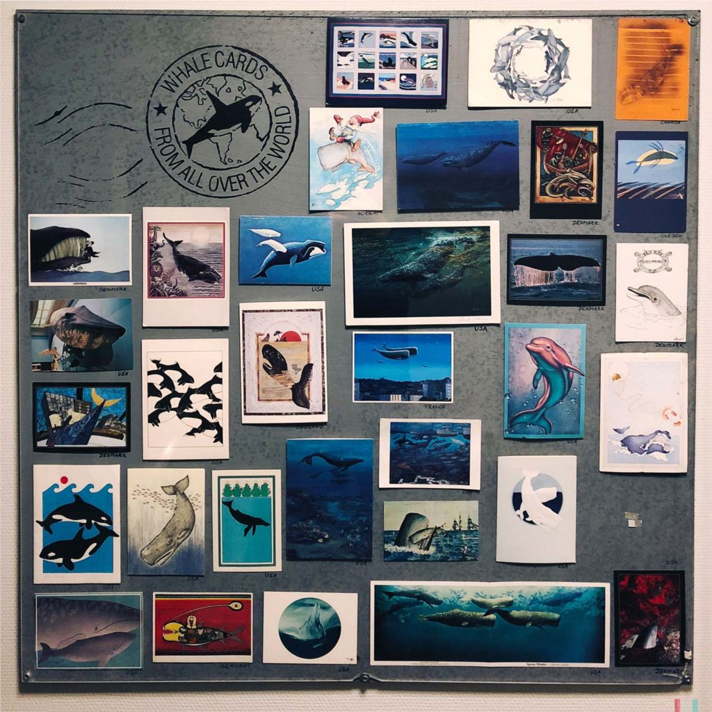 Winter Whale Watching in Norway: Postcards at the whale museum in Andenes-