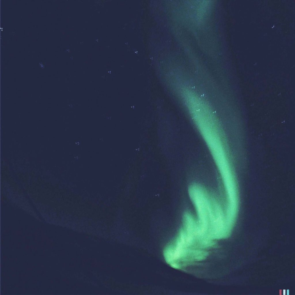 Winter Whale Watching in Norway: Northern Lights in Kvænangen.