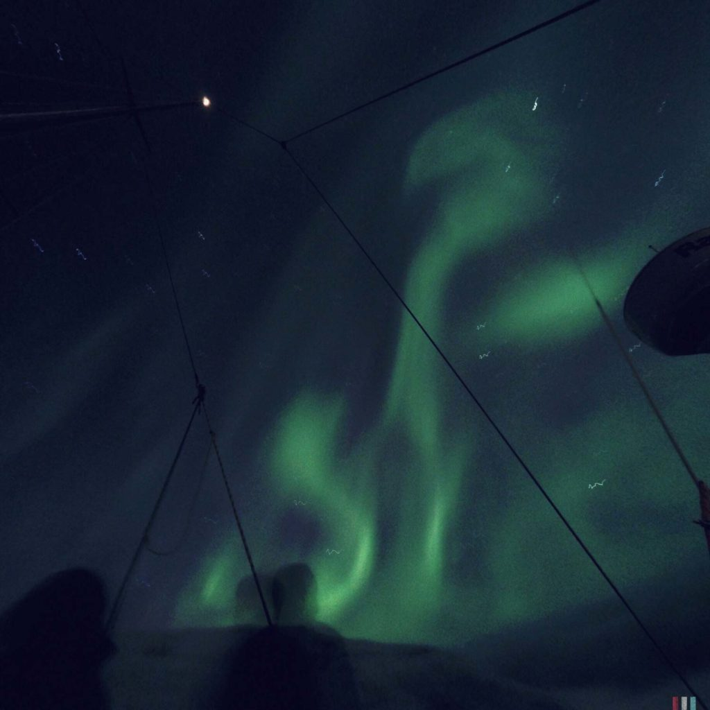 Winter Whale Watching in Norway: Northern Lights on board of the Southern Star.