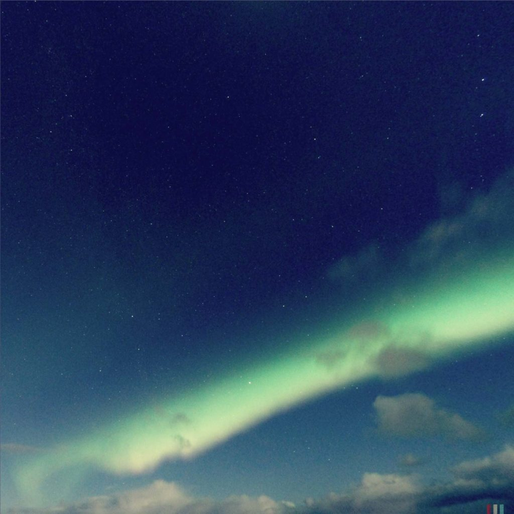 Winter Whale Watching in Norway: Northern Lights.