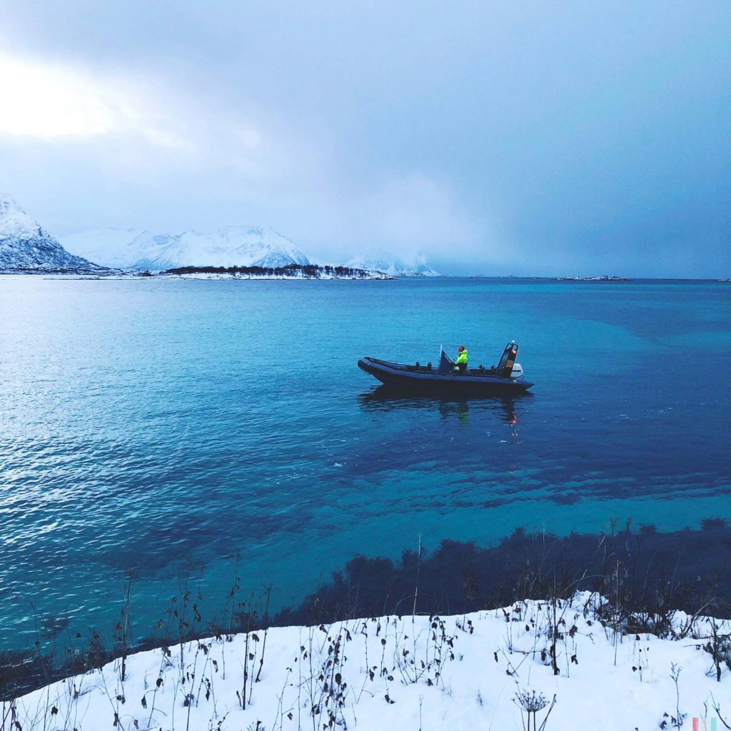Winter Whale Watching in Norway: Dag in the zodiac on the Bergsfjord on Senja Island.