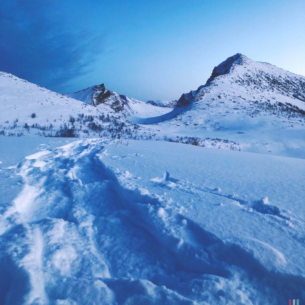 Winter Whale Watching in Norway: Snowshoeing track along the Bergsfjord on Senja Island.