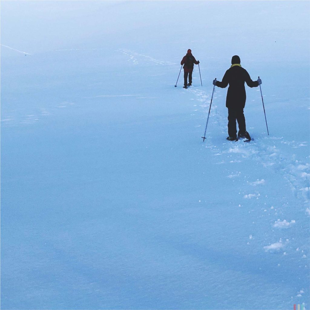 Winter Whale Watching in Norway: Snowshoeing the Bergsfjord on Senja Island.