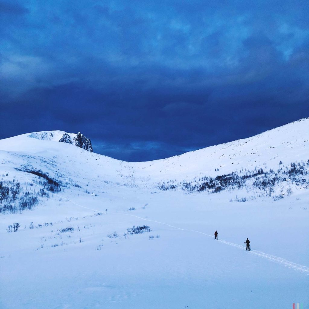 Winter Whale Watching in Norway: Snowshoeing along the Bergsfjord on Senja Island.