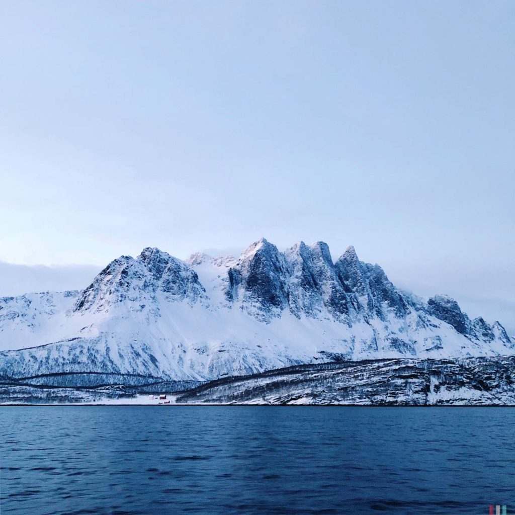 Winter Whale Watching in Norway: Somewhere around the fjord of Kvænangen.