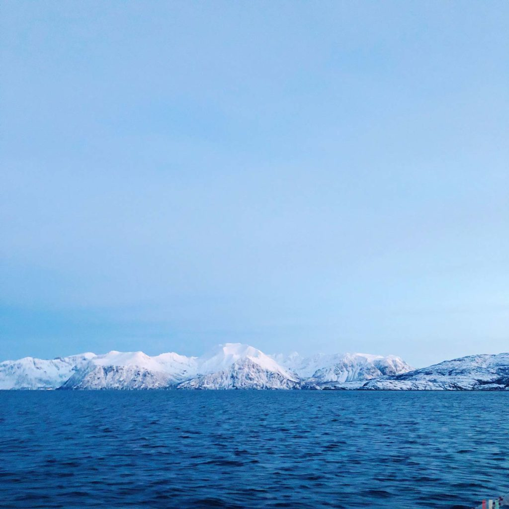 Winter Whale Watching in Norway: Arctic colors in Skjervøy.