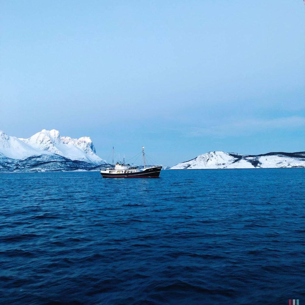 Winter Whale Watching in Norway: Whale watching vessel.